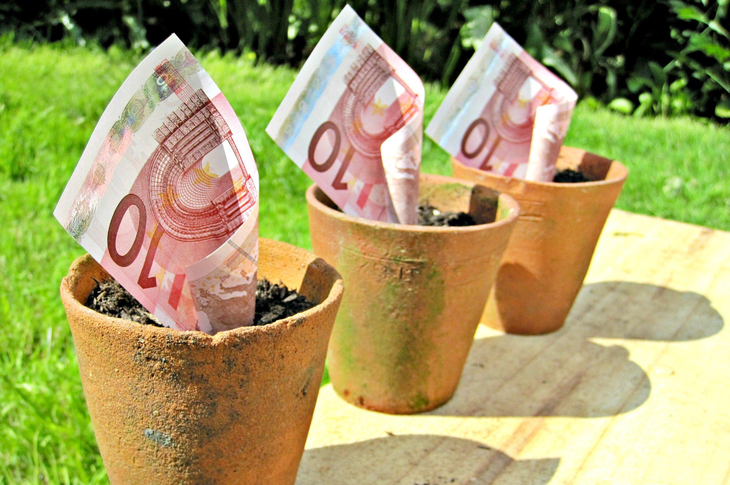 инвестиции, начинающие трейдеры, форекс